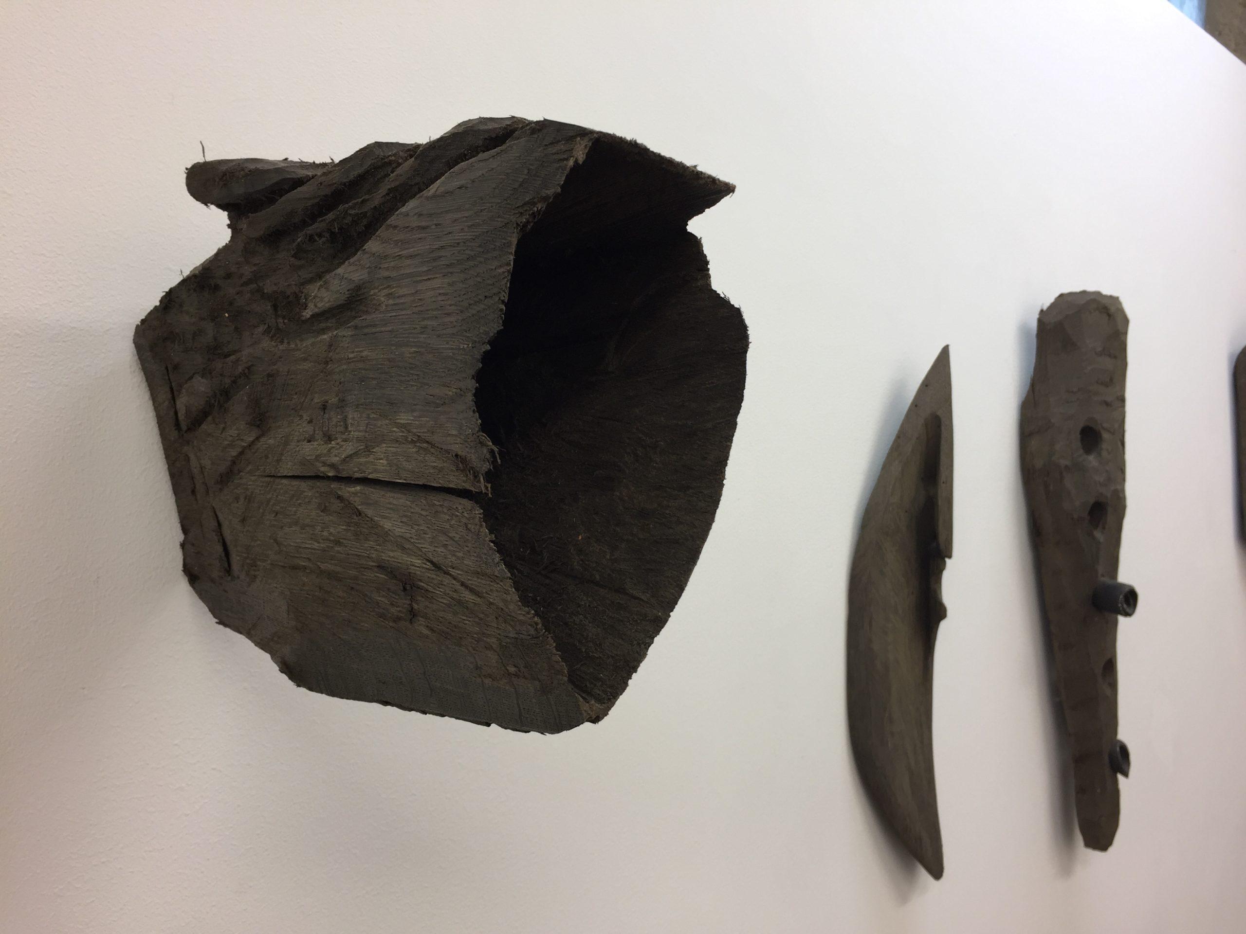 Eugen Jans, Objekte, Sumpfeiche über 2000 Jahre alt, 2017