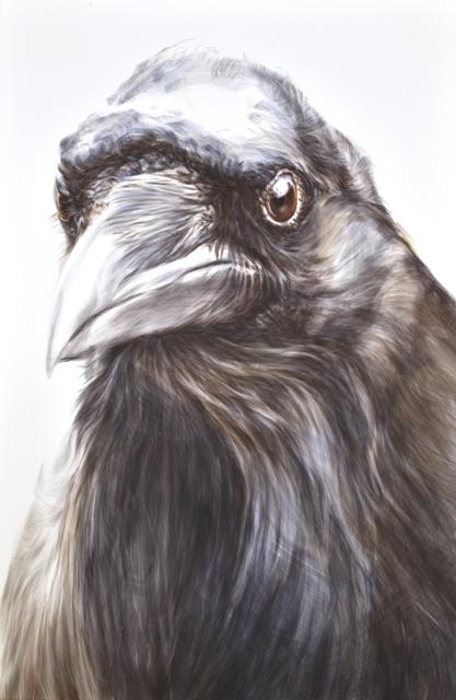 Lea Achermann, Krähe, 99 x 150 cm; Aquarell auf Siebdruckkarton